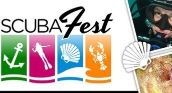 Countdown to ScubaFest Anglesey 2014 is on