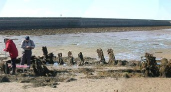 Get ready for the Nautical Archaeology Conference 2013
