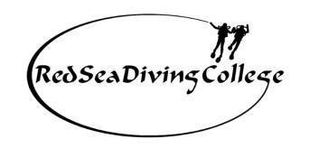 Manta Madness at Red Sea Diving College