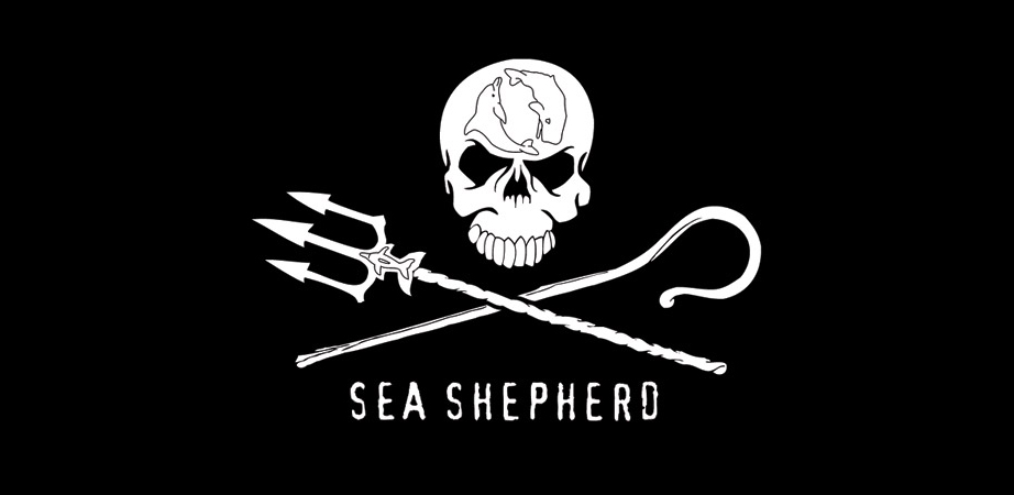 Sea Shepherd announces a new campaign to expose illegal whaling in Iceland