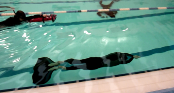 Another Freediving record falls during Huddersfield competition… this time Dynamic No Fins (DNF)