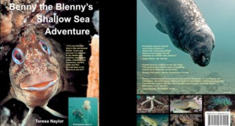 Jeff Goodman Reviews Benny the Blenny's Shallow Sea Adventure by Teresa Naylor