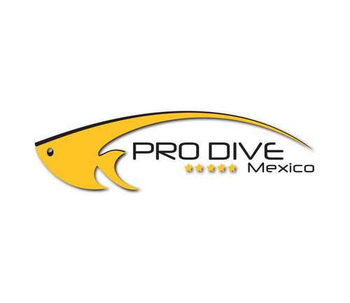 Pro Dive Mexico wins global iGAP Travel Guide Diving Award 2015