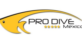 Pro Dive Mexico launches brand new website