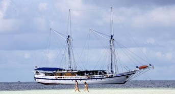 Early Bird Offers from Equator Diving