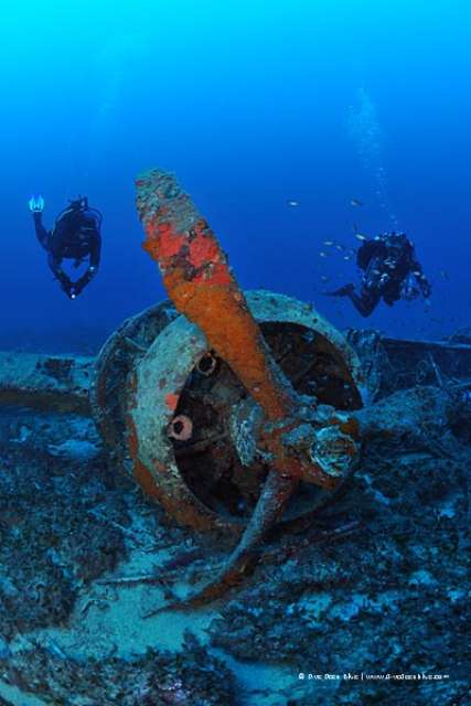 Dive centre resort of the day dive deep blue malta - Deep blue dive centre ...
