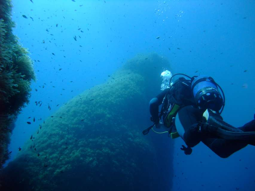 Dive centre resort of the day utina diving college gozo for Gozo dive centres