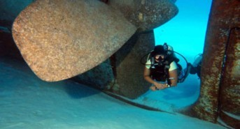 Dive Centre/Resort Of The Day: Divers Down, Grand Cayman