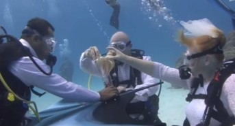 British Couple Have Underwater Wedding – Watch Video