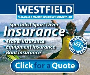 Westfield 300 x 250