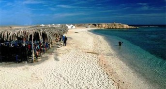Get away to the Red Sea next week with Oonasdivers for just £695