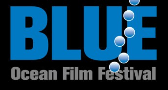Get ready for BLUE 2014