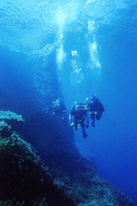 Crocodile Rock & Coral Cave