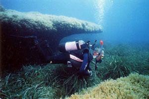 Merkanti Reef
