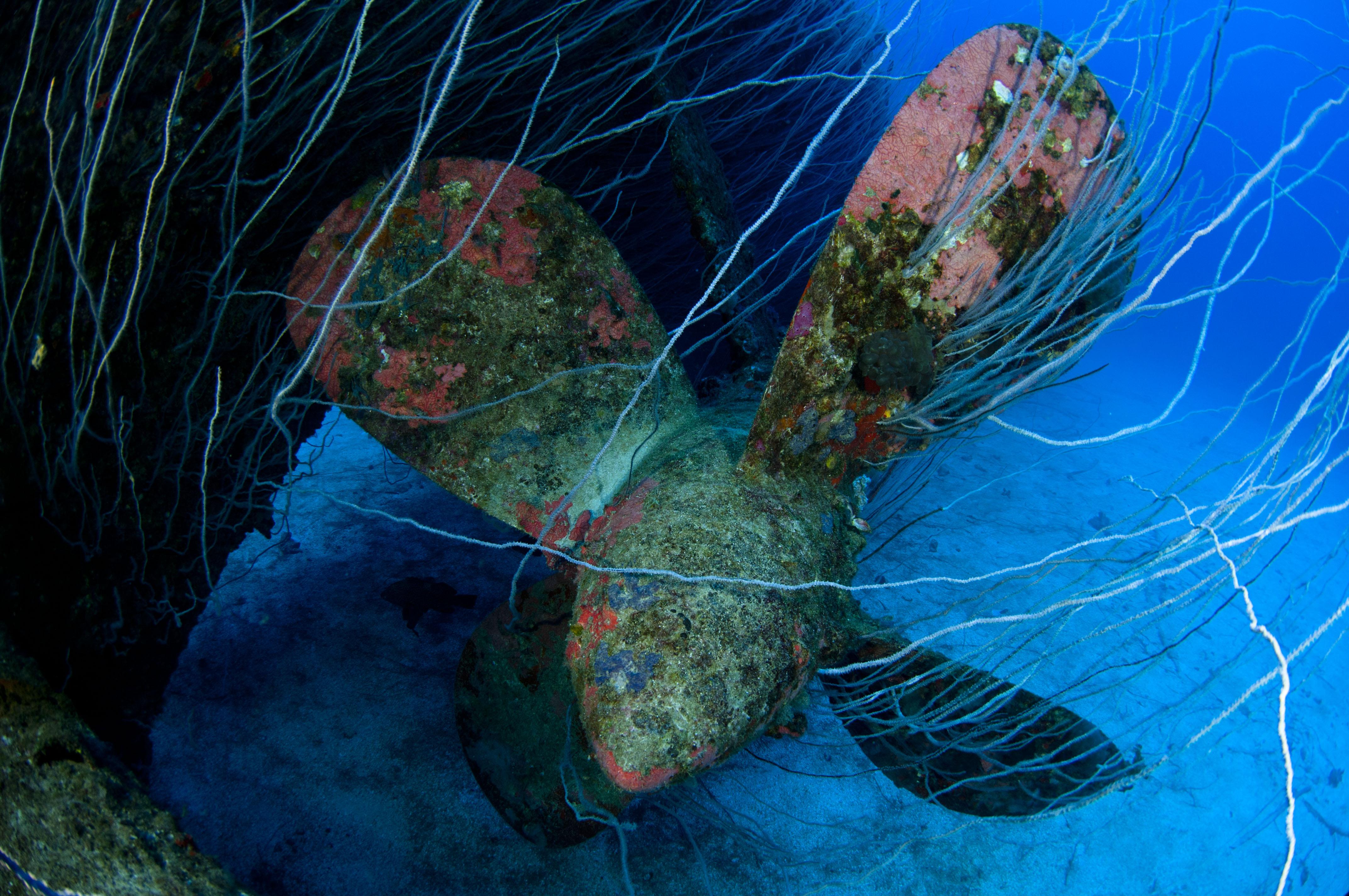 atol coordinates Bikini