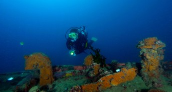 New dive expo to take place in the Philippines this year