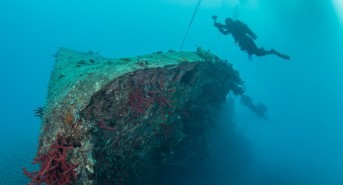Dive show savings from Scuba Travel