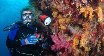 Siren Fleet to run a Fiji underwater photo workshop with Joseph Tepper in June