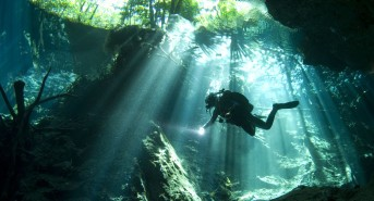 Ultimate Diving Launches Mexico Diving Holidays