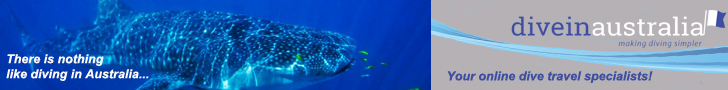 Dive In Australia leaderboard