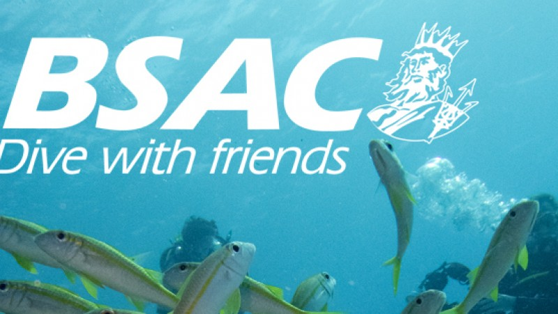BSAC welcomes its new Vice Chair