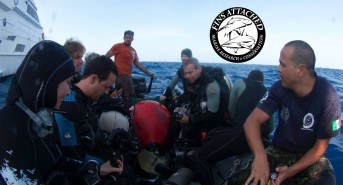 Join Sharon Kwok and Fins Attached for a fundraiser followed by a trip of a lifetime