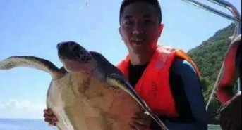 Tourist posing with protected sea turtle causes uproar on social media