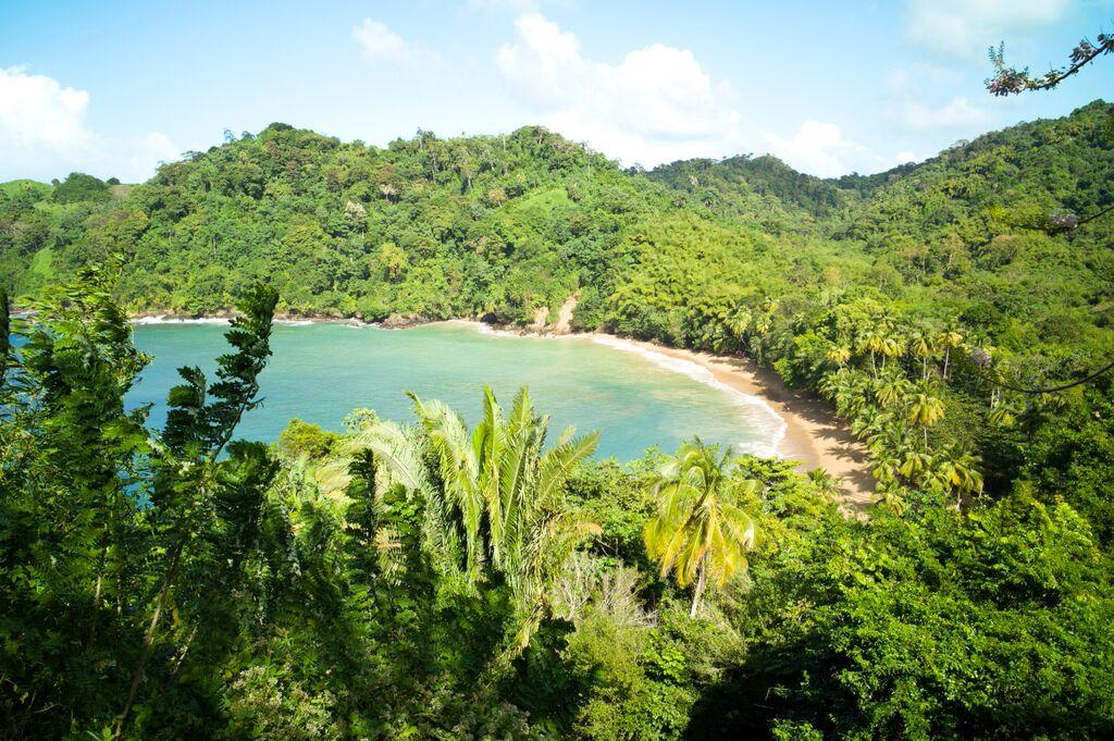 Tobago 15