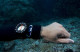 Oyster Diving's PADI Specialty Of The Month: Underwater Navigator