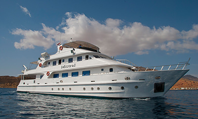 Get away on a Red Sea liveaboard this weekend for as little as £608 with Scuba Travel