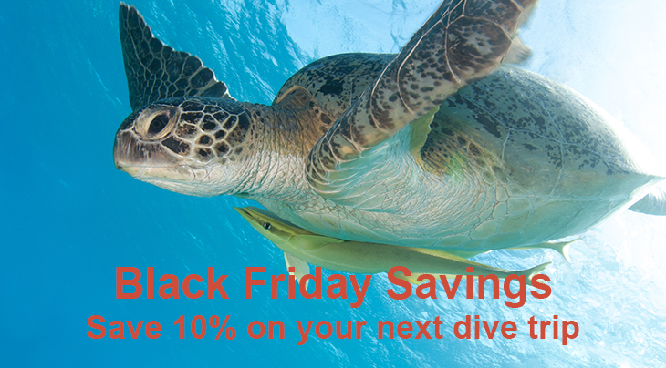 Black Friday Savings Arrive Early with Regaldive