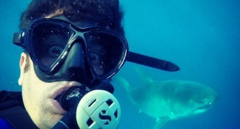 American Pie Star takes selfie with Great White Shark