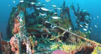 Huge savings on diving in Grenada with Caribbean Fun Travel