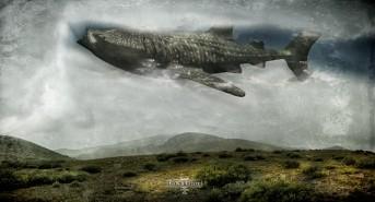 Scubaverse Underwater Photographer Interview: Conor Culver