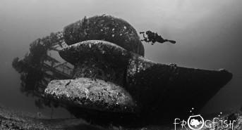 Top 6 Artificial Reef Dives