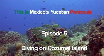 This is Mexico's Yucutan Peninsula: Episode 5 (Watch Video)