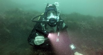 Scuba Diving Equipment Review: Big Blue 2800P Photo and Video Light (Watch Video)