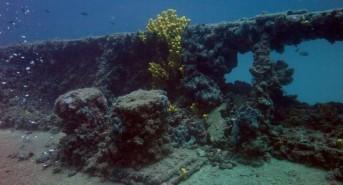 A Croatian Dive Safari