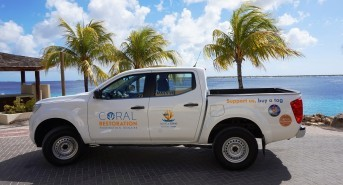 Coral Restoration Foundation Bonaire Receives Onetime Government Funding