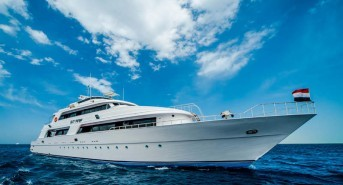 Scuba travel offering some great deals on Red Sea liveaboard diving