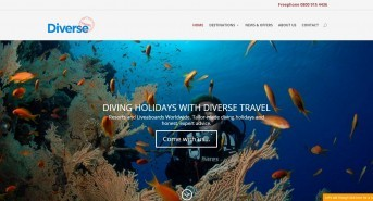 Diving the world just became easier with Diverse Travel's new website