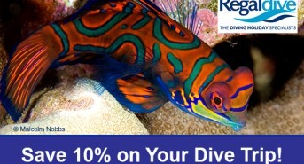 Fantastic Savings with Regaldive at DIVE 2016