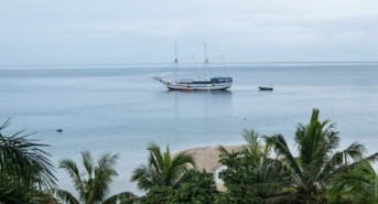 Golden Dreams and Majestic Sirens: Our Last Hurrah in Beautiful Fiji
