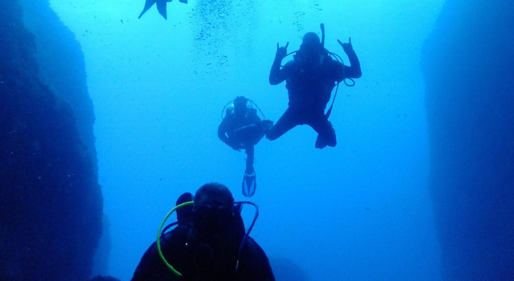 Dive centre of the day dive deep blue malta - Dive deep blue ...