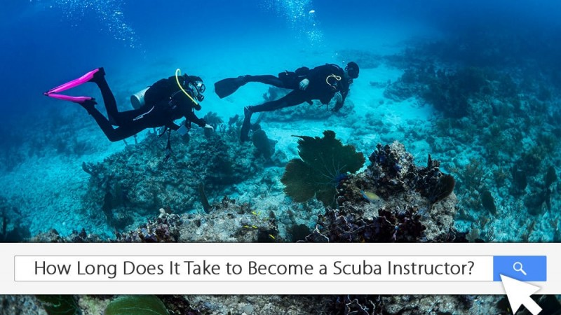 How long does it take to become a great dive instructor?