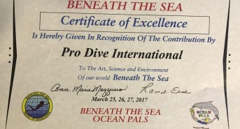 Pro Dive International awarded Certificate of Excellence by Beneath the Sea for third consecutive year