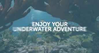 demas-latest-go-dive-now-video-l.jpg