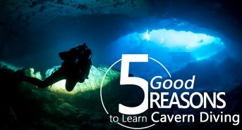 Five excellent reasons to learn cavern diving