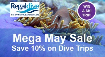 10% savings and a great holiday prize in the Regaldive Mega May Sale
