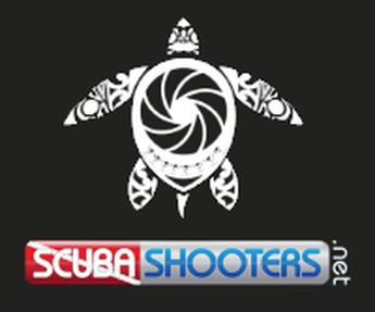 Scubashooters.net 345 x 287 Sidebar